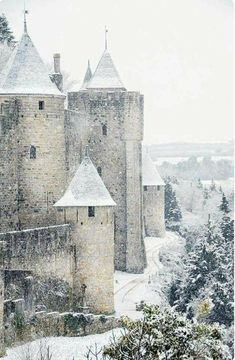 Carcassonne, fortified town from the Middle Ages, in southern France - thanks to Elizabeth Borson