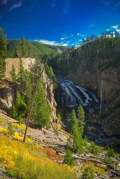 Yellowstone in a Day - How to Maximize Your Time