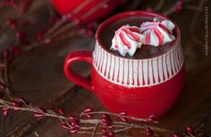 I've made meringue cookies a handful of times and always thought they reminded me of marshmallows when they melt in your mouth, but never thought to serve them in a hot beverage until the other day when I made this dairy-free hot cocoa. As soon as they hit the hot beverage, they soften and turn...  Read more »