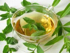 Tisana y té ¿son lo mismo? http://www.amantesdelte.com/informacion-sobre-te/que-es-una-tisana.html