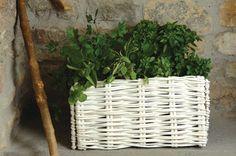 White Willow Herb Planter