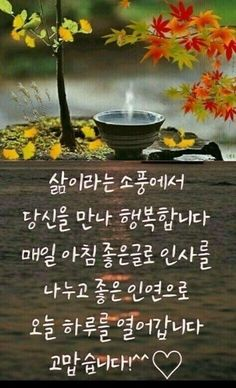 Morning Words, Good Morning, My Folder, Best Quotes, Cool Pictures, Herbs, Sayings, Learn Korean, Buen Dia