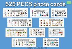 "525 PECS Photo Flash Cards BUNDLE 1.75x1.75"" (4.5x4.5cm):  75 Animals 45 Clothes 30 Electronics 75 Everyday Objects 75 Food & Drink 60 Fruit & Vegetables 30 Furniture 30 Hygiene 75 Toys & Games 30 Vehicles"
