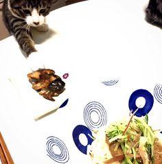 ッリーッッチ #泥棒ネコ   ぬかみそだきを狙うやつ ぬかみそだきは簡単に作れるけどもっと簡単な方法ブログも詳しく更新しました  #保存料不使用 #無添加 #ぬかみそだき #和食 #ごちそう #料理 #ワーキングママ #おうちごはん #nopreservatives #nochemicals #japanesefood #cooking #homedish #gocciso #cat #fishlover #beautyfood #発酵食品 #fermented #ぬか床 #cat #chat #猫