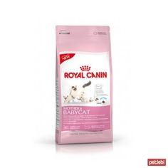 royal canin yavru kedi mamaları hakkında yorumlar