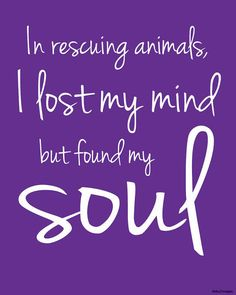 In rescuing animals ... I found my soul 8x10 digital print