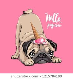Adorable beige puppy Pug in a ice cream party cap on a pink background. Humor card, t-shirt composition, hand drawn style print. Teacup Puppies, Pug Puppies, Pug Information, Love Pink Wallpaper, Dog Restaurant, Pug Illustration, Pug Tattoo, Pug Art, Pug Pictures