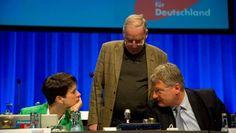 AfD-Parteitag Die Nationalkonservativen Wie sich die AfD den Fahrplan in ein anderes Deutschland vorstellt. Eindrücke vom Programmparteitag in Stuttgart. 30.04.2016, von JASPER VON ALTENBOCKUM, STUTTGART
