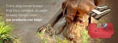 Dogs are messy! Here are some great products to help.
