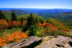 Fall color at Devil's Courthouse on the Blue Ridge Parkway in North Carolina, south of Asheville