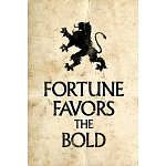 essay on fortune favours the brave