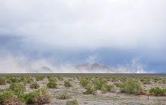 JD's Scenic Southwestern Travel Destination Blog: Berlin-Ichthyosaur State Park, Nevada!
