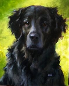 How to paint dogs – Johanne Mangi – Flat Coated Retreiver Malen von Hunden – Johanne Mangi – Flat Coated Retreiver Watercolor Paintings Of Animals, Animal Paintings, Animal Drawings, Acrylic Paintings, Painting Fur, Painting Abstract, Abstract Landscape, Portrait Acrylic, Portrait Paintings