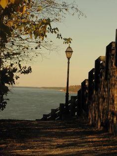 Mississippi River at Natchez