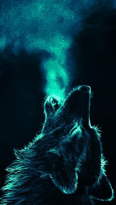 Free Wolf Wallpaper For Your Phone