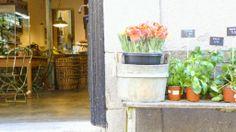 recomendaciones: cafeterías & tiendas con encanto en Madrid (parte II)