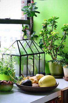 48 Ideas Apartment Patio Decor Tiny Balcony House Guides - All About Balcony House With Balcony, Tiny Balcony, Balcony Ideas, Balcony Garden, Indoor Vegetable Gardening, Small Space Gardening, Gardening Tools, Apartamento No Brooklyn, Williamsburg Apartment