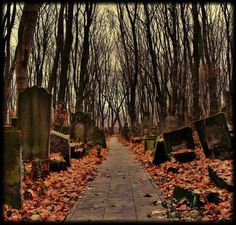 Cemetery | Gothic | Autumn | Pathway Old Cemeteries, Graveyards, Gothic Castle, Southern Gothic, Autumn Aesthetic, Abandoned Castles, Serenity, Halloween, Pictures