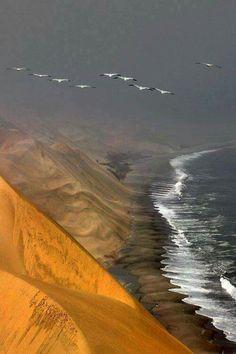 Namibia desert meets Atlantic ocean
