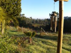 Early morning view from our cottage in Alentejo Portugal