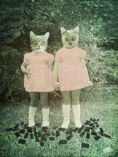 Meow Sissy. Like your dress.