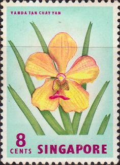 Singapore 1962 SG 68 Harlequin Fish Fine Mint SG 68 Scott 56 Condition Fine LMM Only one post charge applied on multiple purchases Details lion N B Old Stamps, Vintage Stamps, Orchid Images, Valley Of Flowers, Stamp Dealers, Postage Stamp Art, Going Postal, Birth Flowers, Flower Stamp