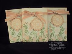 Seed Packet Gifts by cjbrasher - Cards and Paper Crafts at Splitcoaststampers