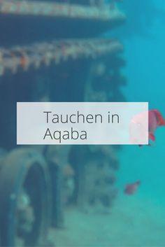 Tauchen in der Kinderstube des Roten Meeres – Aqaba – omvej