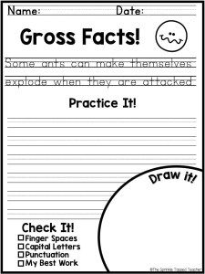 Fun Handwriting Worksheets For Older Kids In 2020 With Images