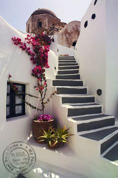 I'm in love with these steps, the small window and the blooming bougainvillea in a Santorini alley.