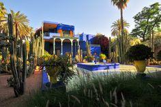marrakech: jardines majorelle