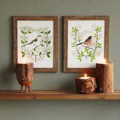 BIRDS AND BLOOMS ART - INDIVIDUAL STATES   geography, state bird, state flower, wall art   UncommonGoods