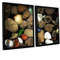 ArtWall Kevin Calkins Petoskey Stone Collage Iii 2-Piece Floater Framed Canvas Set, Size: 24 x 36, Brown