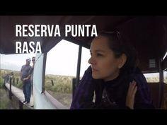 Reserva Punta Rasa san clemente del tuyú