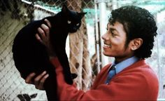 Michael Jackson and his lovely black cat! http://kittyflix.com/