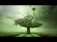 Abraham Hicks , The brilliant practice to heal everything - New ever best segment - YouTube