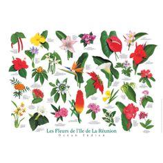 317 Meilleures Images Du Tableau Ile De La Reunion Gardens Et Saints