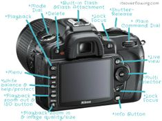 How to Use an SLR Camera - ItsOverflowing.     Fabulous blog on the basic's of digital photography. Each post is a new lesson w/ an activity to do to make you learn your camera!! Perfect for Nikon or Canon owners.