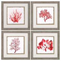 Bring a charming burst of color into your modern living space with this vibrant red coral colored set of four framed wall art pieces. Framed wall art set of Red coral theme. Style # at Lamps Plus. Frame Wall Decor, Wall Art Sets, Frames On Wall, Framed Wall Art, Framed Art Prints, Wall Art Decor, Room Decor, Coral Wall Art, Coral Walls