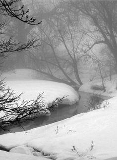 New Landscape Photography Woods Winter Scenes Ideas Winter Szenen, Winter Magic, Winter Photography, Landscape Photography, Nature Photography, Morning Photography, Snow Forest, Snow Scenes, Winter Beauty