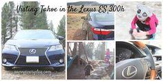 Visiting Tahoe in the 2015 Lexus ES 300h