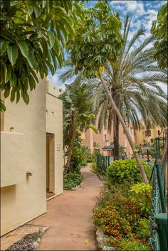 Path by David_Gilson from http://500px.com/photo/213950951 - Duquesa Village Puerto de La Duquesa Costa del Sol Spain.. More on dokonow.com.