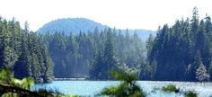 50 Free Campsites in BC *not all are trailer accessible