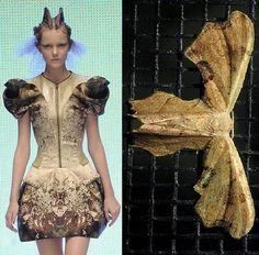 Moth dress by Alexander McQueen Alexander Mcqueen, Mcqueen 3, Fashion Art, High Fashion, Fashion Design, Crazy Fashion, Moda Animal, Atlantis, Butterfly Dress