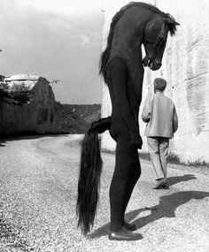 Jean Cocteau with Horse-men on the set of Testament d'Orphée, Les Baux de Provence, Photo by Lucien Clergue Creepy Photos, Strange Photos, Creepy Images, Film Noir Fotografie, Old Photos, Vintage Photos, Jean Cocteau, Arte Horror, Diane Arbus