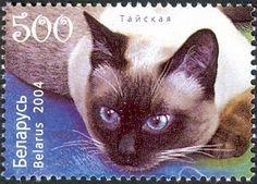 Belarus Stamp 2004 - Siamese cat