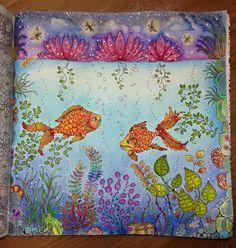 Fish Secret Garden. Peixe Jardim Secreto. Johanna Basford
