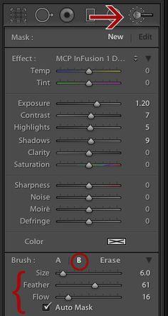 panel options1 Super Powerful Lightroom Adjustment Brush Tips to Make Editing Easier