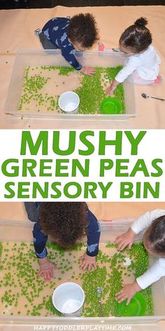 toddleractivities sensoryplay preschool playtime toddler sensory mushy green happy pea bin Mushy Green Pea Sensory Bin HAPPY TODDLER PLAYTIMEYou can find Messy play and more on our website Toddler Messy Play, Toddler Sensory Bins, Baby Sensory Play, Sensory Activities Toddlers, Sensory Boxes, Infant Activities, Toddler Preschool, Sensory Table, Free Activities