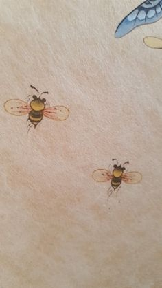 Korean Painting, Insects, Contemporary Art, Butterfly, Drawings, Illustration, Flowers, Blog, Animals
